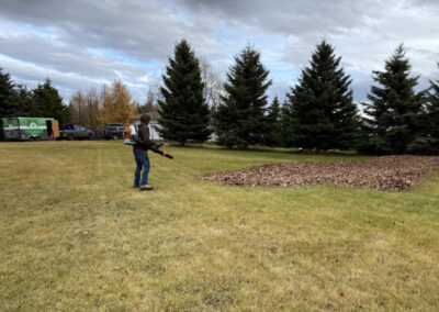 Fall Leaves Cleanup